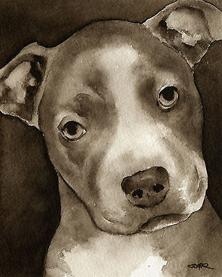 PIT BULL PUPPY Watercolor ART Print Signed by Artist DJR