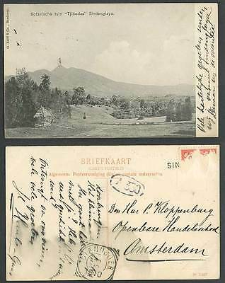 Indonesia Java 1910 Old Postcard Tjibodas Sindanglaya Botanical Garden Mountains
