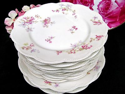 Haviland Limoges 1900's  Set Of Plates 8 Lunch Plates 2 Dinner Plates Floral