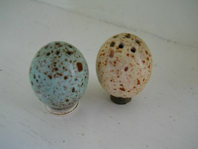 Miniature MacIntyre speckled egg cruets