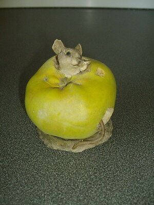 Country Artists / Mouse In An Apple / Richard Cooper
