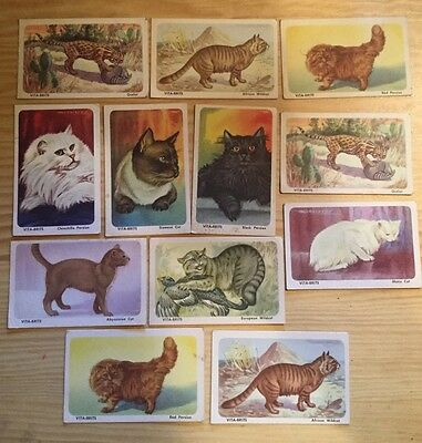 VINTAGE VITA-BRITS CEREAL COLLECTOR CARD LOT OF 13 Cats Of The World