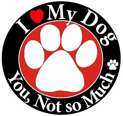 I Love my Dog, you not so much, funny saying Pet Magnet