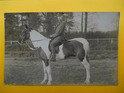 WW1 The Kings Liverpool Regiment Soldier & Cavalry Horse RP c1914/18