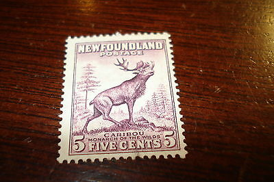 #190 NFLD - Canada - stamp - used