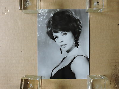 Senta Berger original busty studio portrait photo 1966 Long Legs Long Fingers