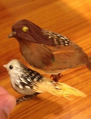 Adorable Vintage Quail And White  Bird Figure Display Made By Feather