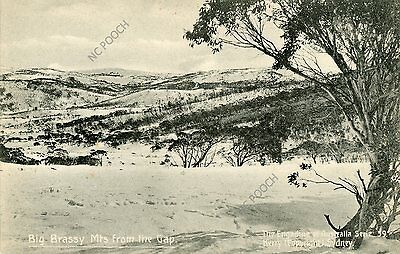vintage postcard Big Brassy Mts from the Gap Sydney NSW Australia CAT CHARITY