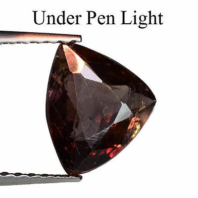 1.265Cts Amazing Colour Change Brown Natural Axinite Trillion Loose Gemstones