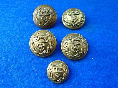 Job Lot Of Mixed Wwi/wwii Royal Hampshire Regiment Brass Tunic Buttons