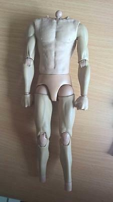 1/6 Body muscular Hot Toys ttm19 kitbash, head, sixth scale, sideshow