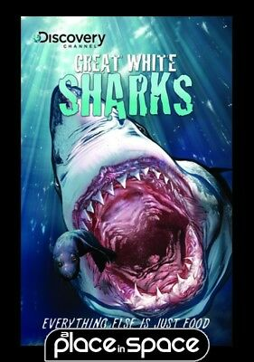 Discovery Great White Sharks  - Softcover