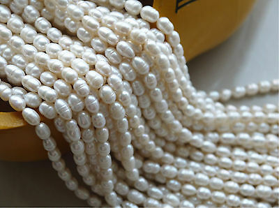 Natural 4-5mm Bullet Freshwater Pearl Jewelry Making loose gemstone beads 14""