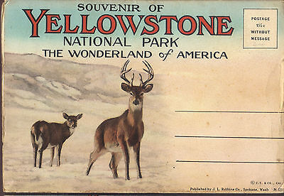 Yellowstone National Park Wyoming Souvenir fold-out postcard ca. 1913 unposted