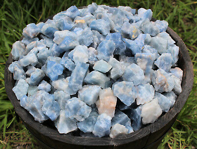 Bulk Wholesale Lot: Rough Blue Calcite 2 lb Crystal Healing Chakra Raw Chunks
