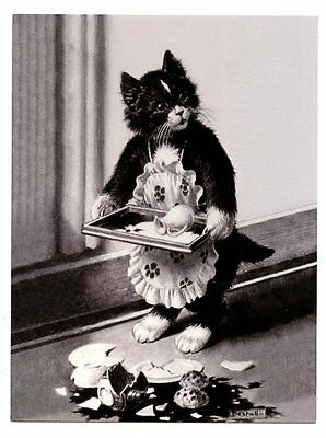 modern cat postcard maid black cat spills & breaks tea china from tray