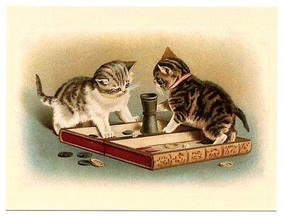 modern cat postcard Maguire cute tabby cats play game of backgammon