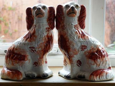 Antique Staffordshire Pottery King Charles Spaniel Mantle Dog Animal Figure Pair
