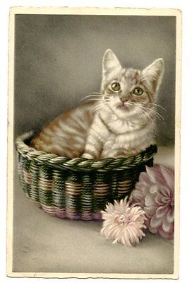 vintage cat postcard cute cat kitten sits in basket pink flowers