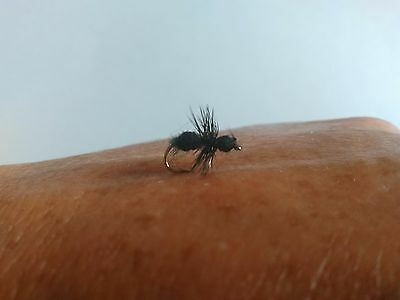 Small Black Flying Ant Dry Fly Fishing Trout Flies Size 14
