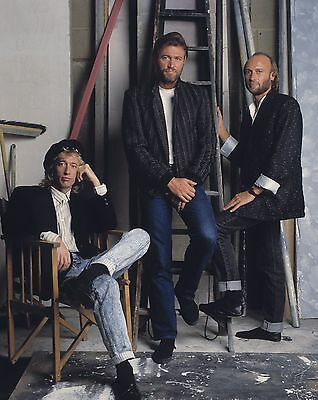"Bee Gees 10"" x 8"" Photograph no 10"