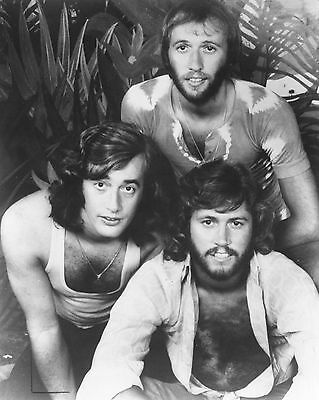 "Bee Gees 10"" x 8"" Photograph no 15"