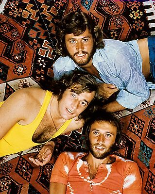 "Bee Gees 10"" x 8"" Photograph no 28"