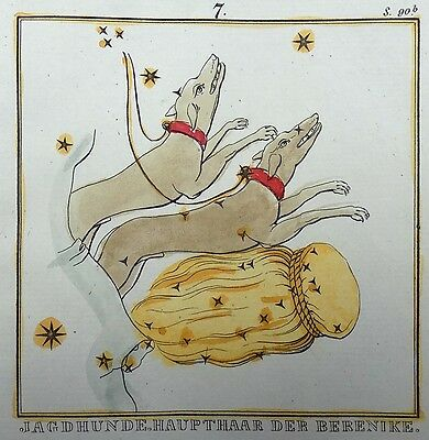 1830 Rockstroeh - HUNTING DOGS - handcolored CELESTIAL Astronomy CHART