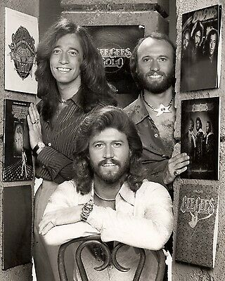 "Bee Gees 10"" x 8"" Photograph no 46"