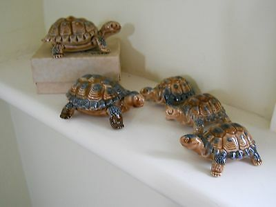 FIVE Wade tortoises - small, No 4 & 5 plus one box