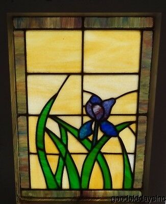 """Antique Iris Flower Window - Chicago Bungalow - Stained Glass 18"""" x 25"""""""