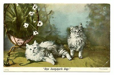 vintage cat postcard longhaired grey cats flower stand Landor One Summer's Day