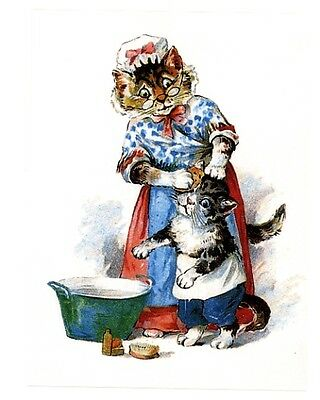 modern cat postcard dressed cats bath time grandma sponge washes young cats face