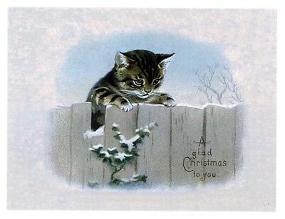 modern cat postcard Maguire tabby cat peeping over fence in snow Christmas
