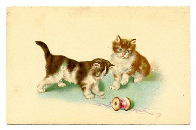 vintage cat postcard curious cats pair play w pink reel of cotton string