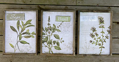 3 Wood Wall Sign Plaques Kitchen Decor New Herbs Basil Sage Thyme Organic Herbal