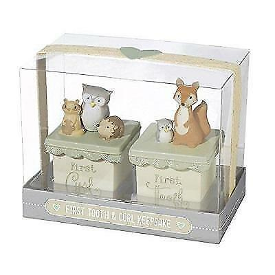 First Tooth & First Curl Boxes Set by Grasslands Road New