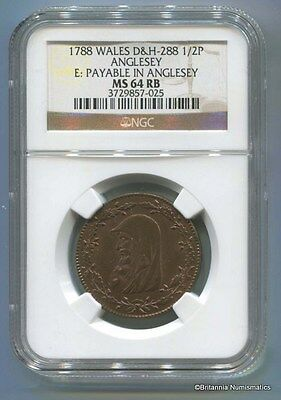 GREAT BRITAIN Anglesey 1/2d Dalton & Hamer 288 Conder NGC M64RB Inv 1692