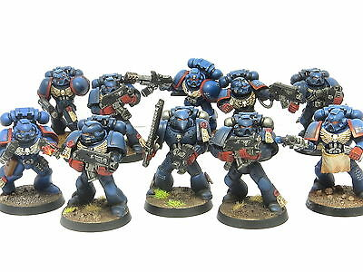 CRIMSON FISTS TACTICAL SQUAD  -  Painted Warhammer 40K Space Marine Army