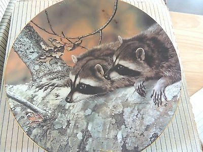 1989 WS George Plate Fascination by Carl Brenders 1st Our Woodland Friends