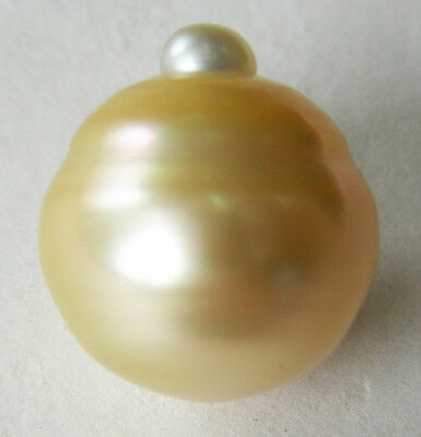 15.7mm!! AUST GOLD SOUTH SEA PEARL 100% UNTREATED UNDRILLED +CERT AVAILABLE