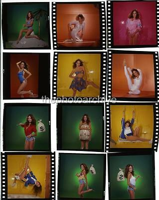 Catherine Bach 8x10 to 24x36 Photo Poster Canvas Wall Adhesive by LANGDON HL334