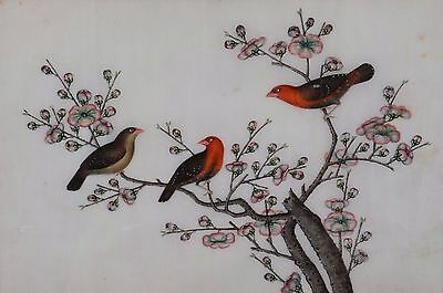 Fine Antique Chinese Rice Pith Paper Painting Three Song Birds with Blossoms