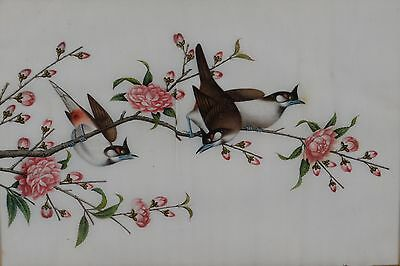 Fine Antique Chinese Rice Pith Paper Painting Three Song Birds in Tree