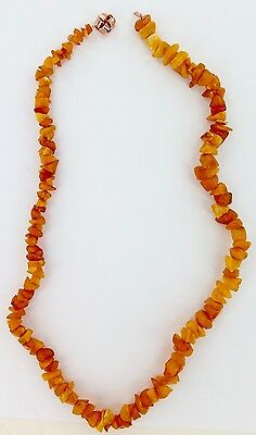 Superb / Untreated / Uncut / Raw Baltic Butterscotch Amber Necklace. 46 Grams