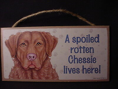 CHESSIE Spoiled Rotten DOG wood SIGN wall PLAQUE puppy CHESAPEAKE BAY RETRIEVER