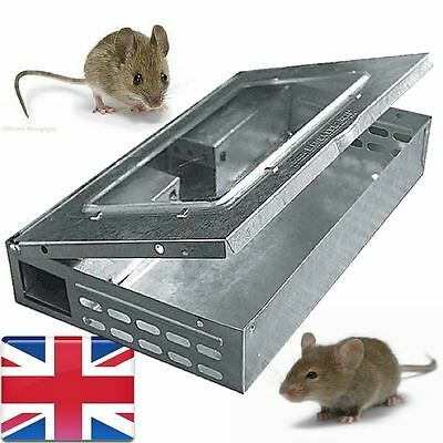 2X Mouse Trap Humane Mice Cathcer Multicatch Live 10 Mouses Metal Reuseable Pest