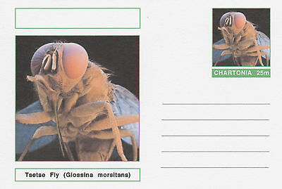CINDERELLA 4706 - INSECTS - TSETSE FLY  on Fantasy Postal Stationery card