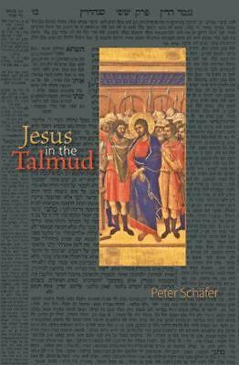 Jesus in the Talmud by Peter Schäfer | Paperback Book | 9780691143187 | NEW