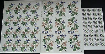 Ceramic Decals Bramble1 Sheet 9 Of 747302 1 Sheet16 Of 747303 7 24 Buds R/price